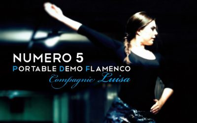 N°5 PDF, Portable Demo Flamenco